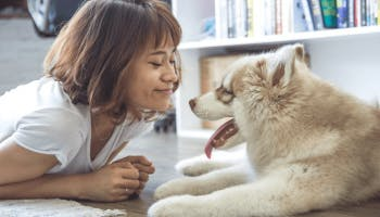 Why It's Completely Safe to Sleep with Your Pet